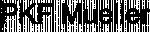 Logo: PKF Mueller